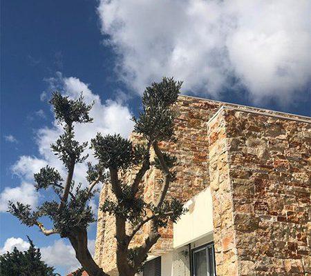 akl architects- residential villa -MACHGHARA (2)