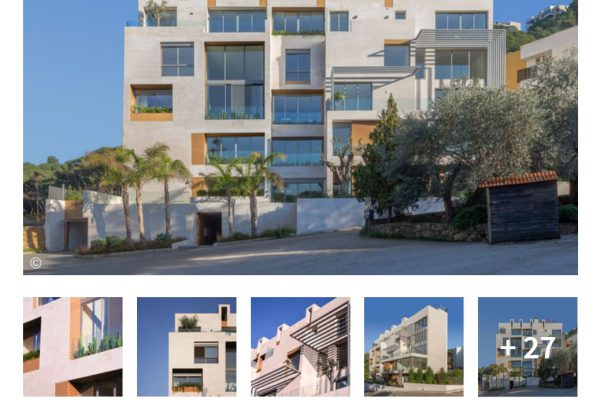 archdaily- aylout-publications